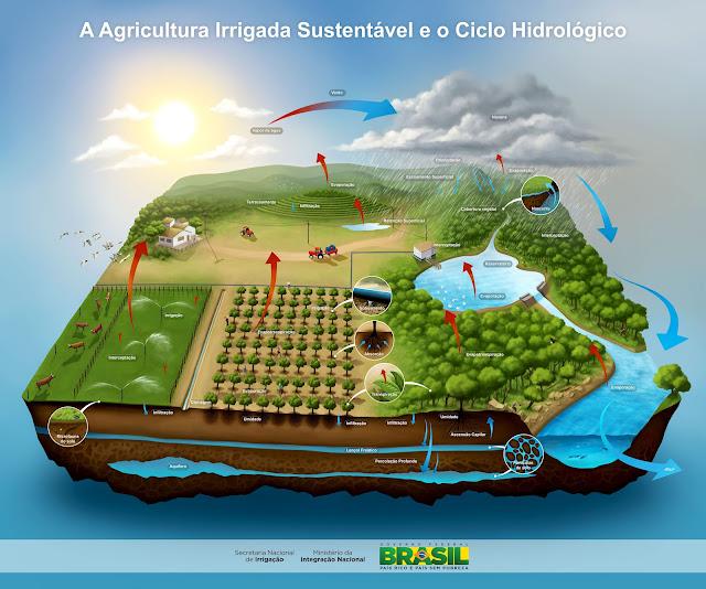 A Agricultura Irrigada Sustentável e o Ciclo Hidrológico