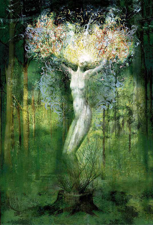 celtic tree magic ogham lore and druid mysteries
