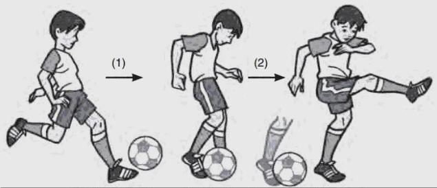 Teknik Dasar Menendang Permainan Sepak Bola