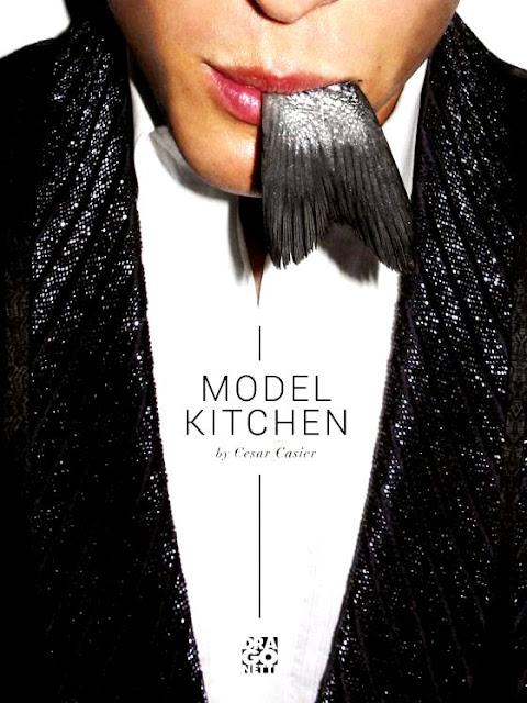 model modelle cucina ricett