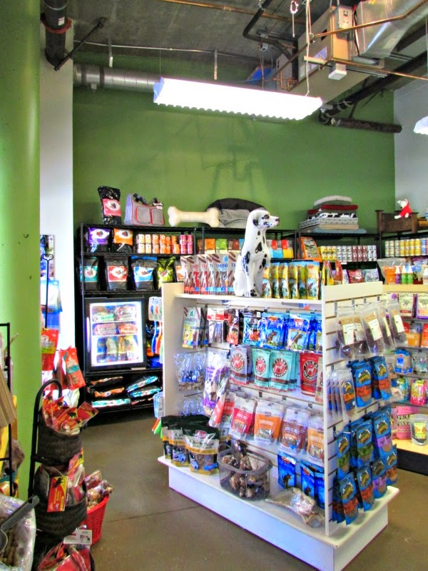 Canine Comforts Oakland // Interior of Store