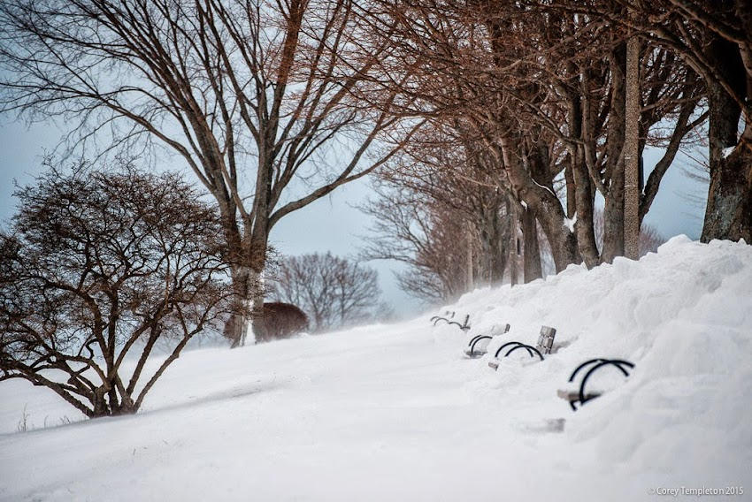 Portland, Maine January 2015 snowy winter on the Eastern Promenade photo by Corey Templeton