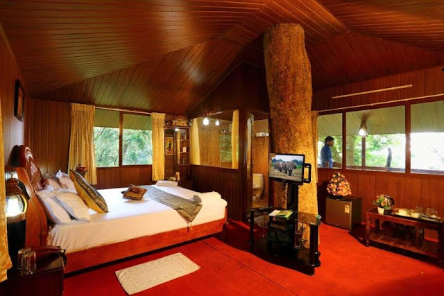 Nice Tree Houses enchanting kerala tree house | exciting kerala tour packages
