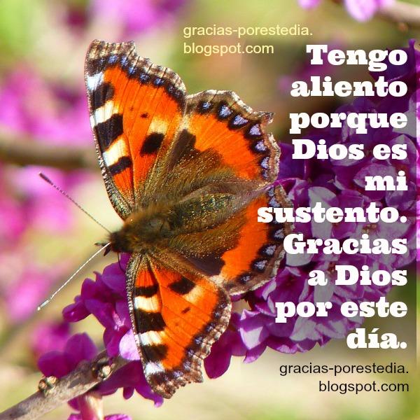 imagen con frases cristianas de gracias a Dios por el día, reflexión para esta nueva mañana, buenos días dando agradecimiento al Señor, por Mery Bracho