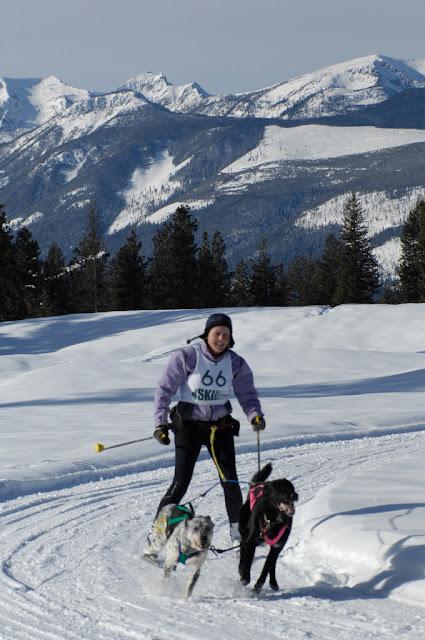 >Skijoring
