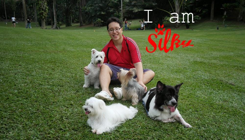 I am Silky