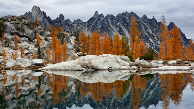 Golden larches and Prusik Peak reflected in Troll Sink Tarn, Upper Enchantments, Alpine Lakes Wilderness, Washington (© Karen Crowe/Corbis) 444