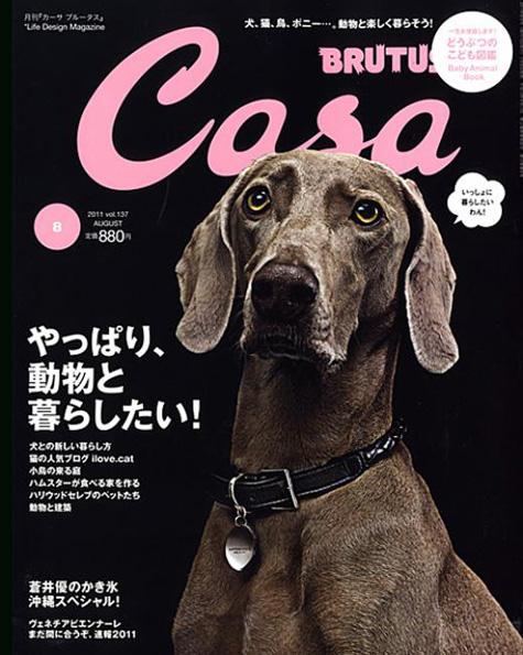 Brutus Dog Cover