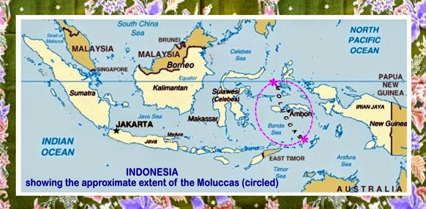 Discovering Asia The East Indies Opened Up To Colonial Expansion