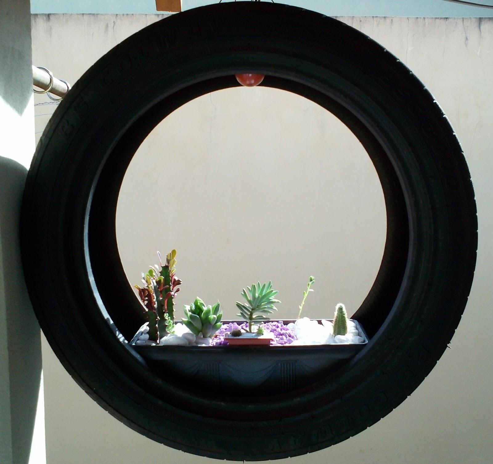 mini jardim cactos suculentas : mini jardim cactos suculentas:Inovando com Cactos e Suculentas.: Mini Jardim de Cactos e Suculentas.