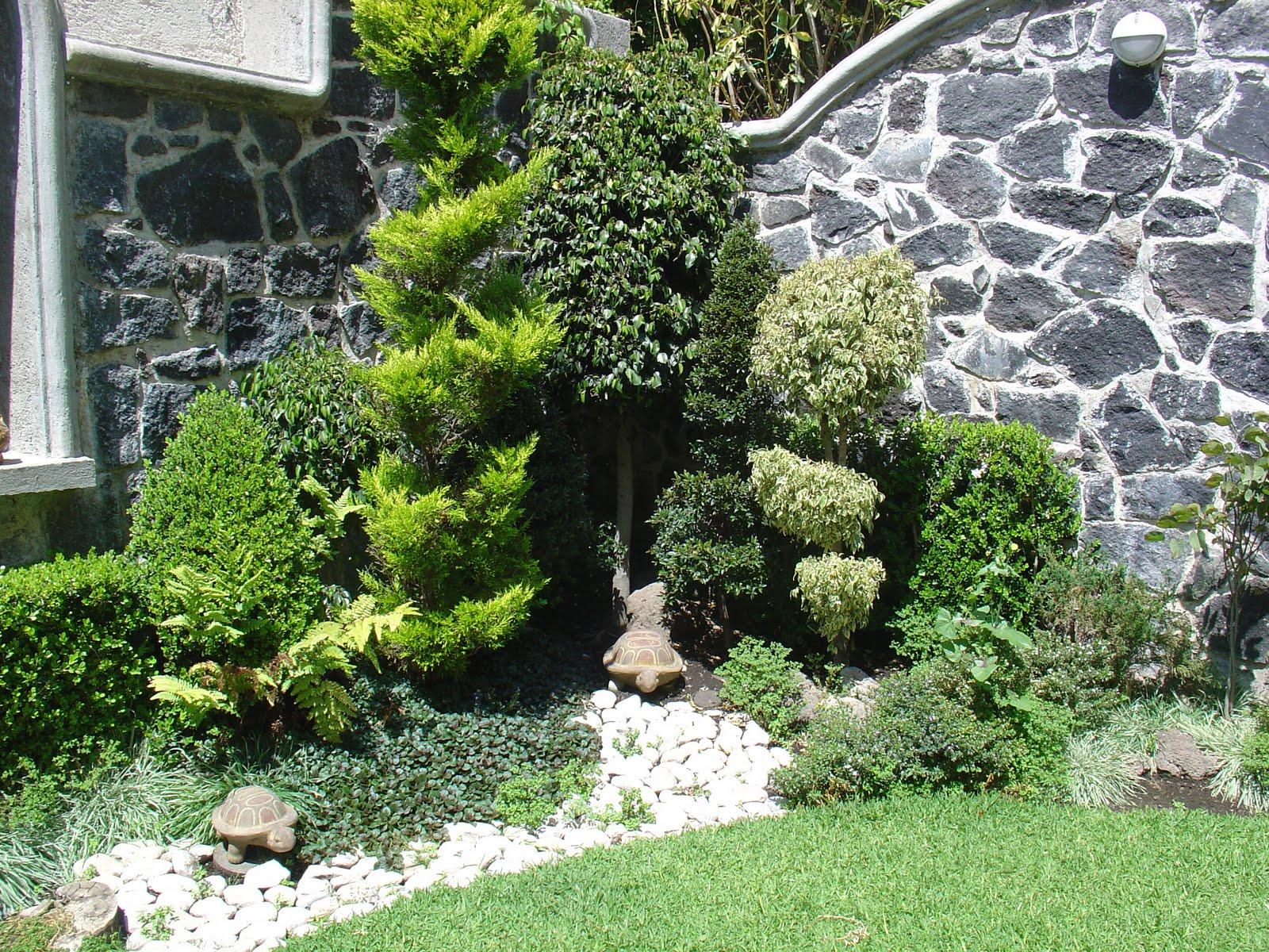 jardineria y paisajismo en mexico