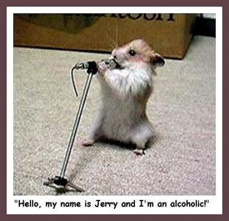 Funny rat pictures online news icon