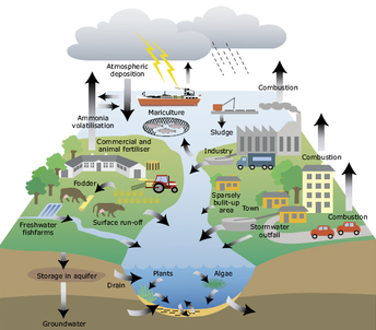 a plan for reducing water pollution essay Sc's plan to reduce pollution runoff in south carolina sc implementation plan for achieving total maximum daily load reductions from nonpoint sources.