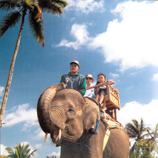 True Balinese Experience Elephant Ride Full Trek