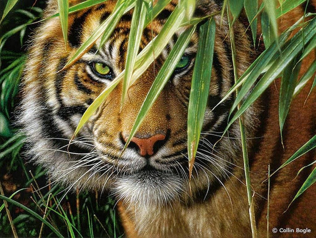 cuadros-de-paisajes-hermosos-con-animales