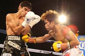 Mexican Light Flyweight Boxing Movies
