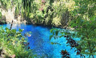 صورة توضح تداخل الطبيعة مع صفاء نهر الكريستال بالفلبين