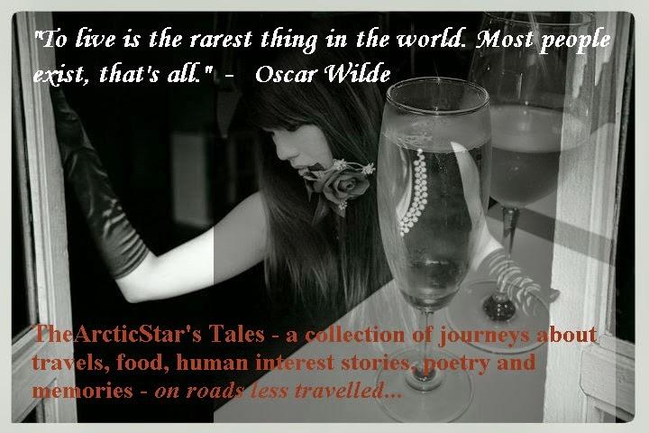 TheArcticStar's Tales