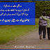 Fasloon Ko Mitaa Dijiey, Apnoo Ko Manaa lijiey - Heart Beat sMs, Nice sMs