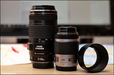Fotografia del Panasonic  G X Vario 45-175 mm a confronto con il Canon EF 70-300 mm