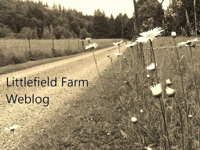 Littlefield Farm Web Log