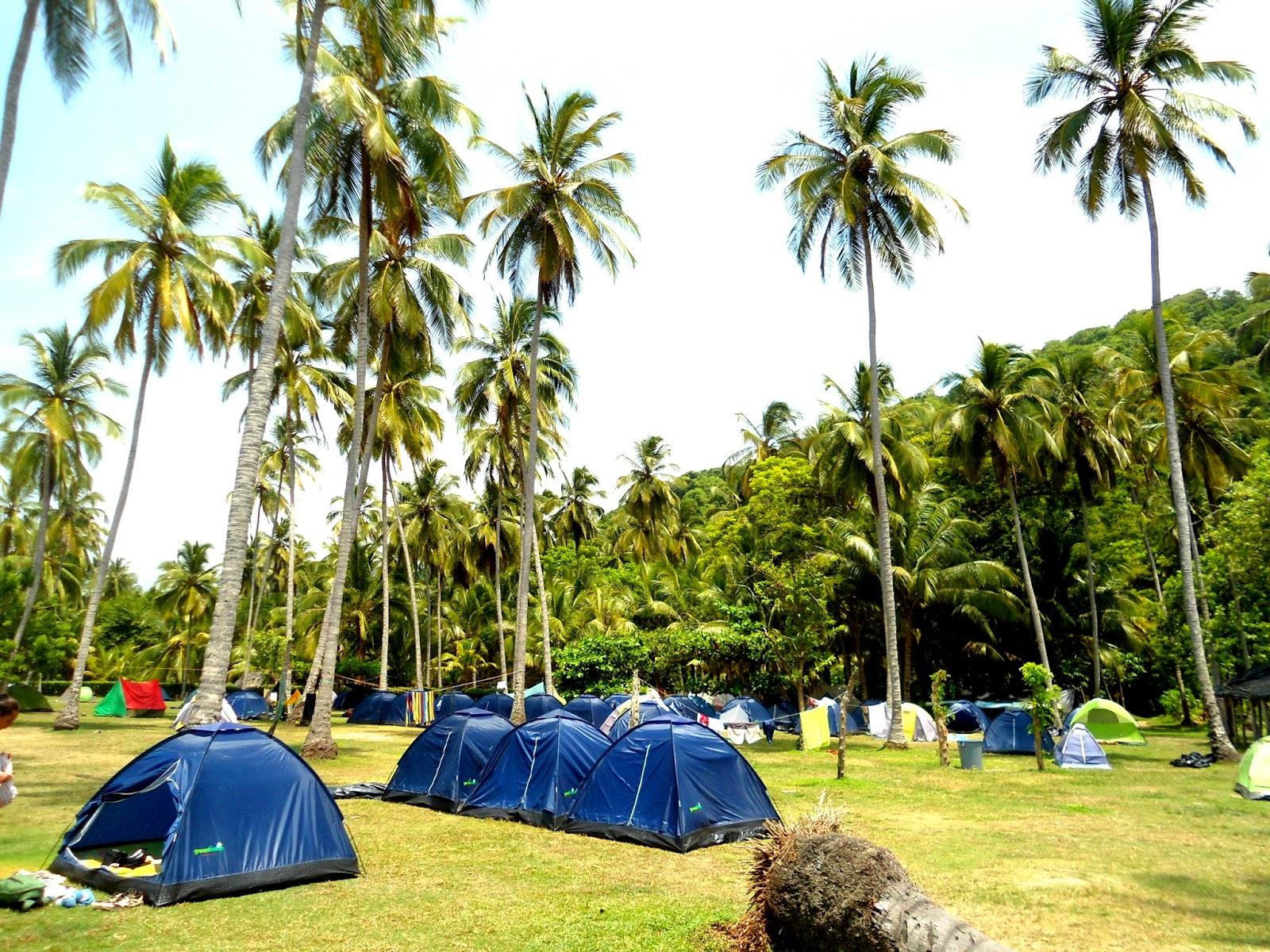 Provenzani diario especial parque tayrona para todos los for Camping el jardin san juan