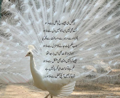 Urdu Poetry new poetry latest poetry Best poetry
