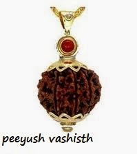 Astrological Rudraksha Bead