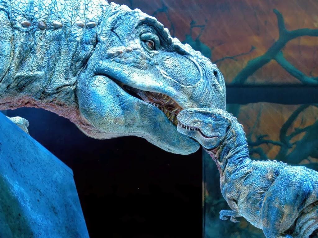 "<img src=""http://1.bp.blogspot.com/-ENM_cra0IS4/UtqpX8cOgLI/AAAAAAAAI1Y/JyDZwkrhAso/s1600/dinosaur-don%27t-worry.jpeg"" alt=""dinosaur don't worry"" />"