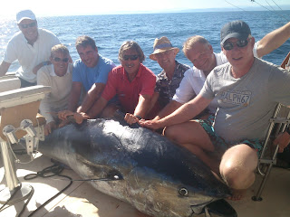 Deep sea fishing. Big game. Tuna fishing. Marbella, Spain.