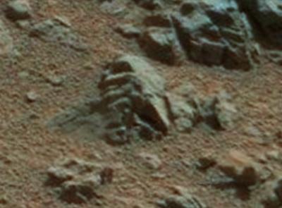 Human Skull Discovered By NASA's Mars Rover, UFO Sightings