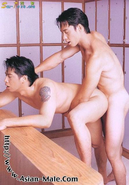 gay sex thai.com
