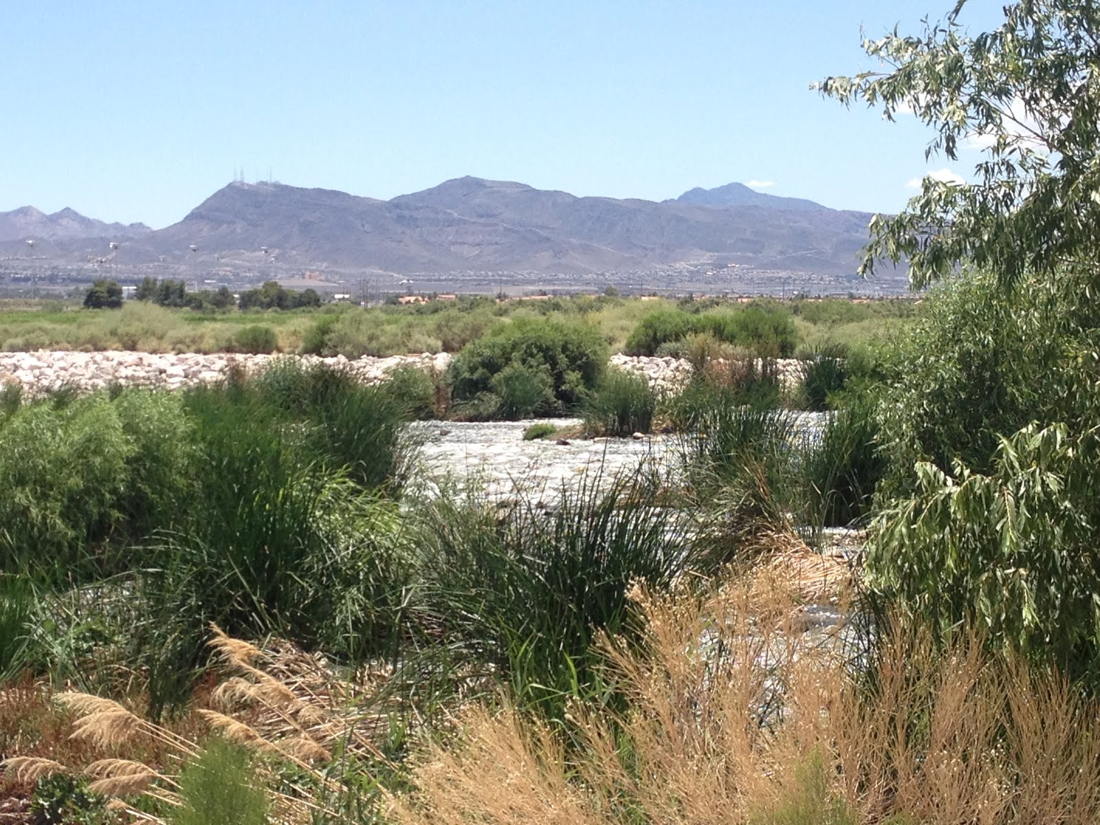 bike ride on sunday at clark county wetlands park the trail crosses and follows the las vegas wash which drains the las vegas valley