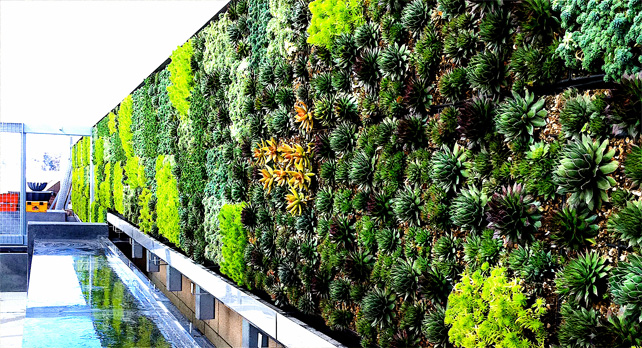 Marbella trade s a s muros verdes verticales ecologicos for Diseno de muros verdes