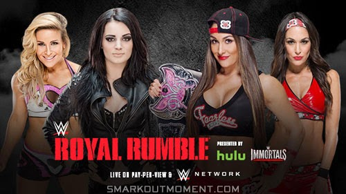WWE Royal Rumble 2015 Paige Natalya Nikki Bella Brie Bella