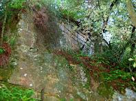Restes de les antigues muralles en la pujada al Castell de Sant Jaume