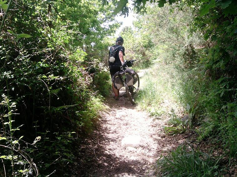 Vía de la Plata y Camino Sanabrés