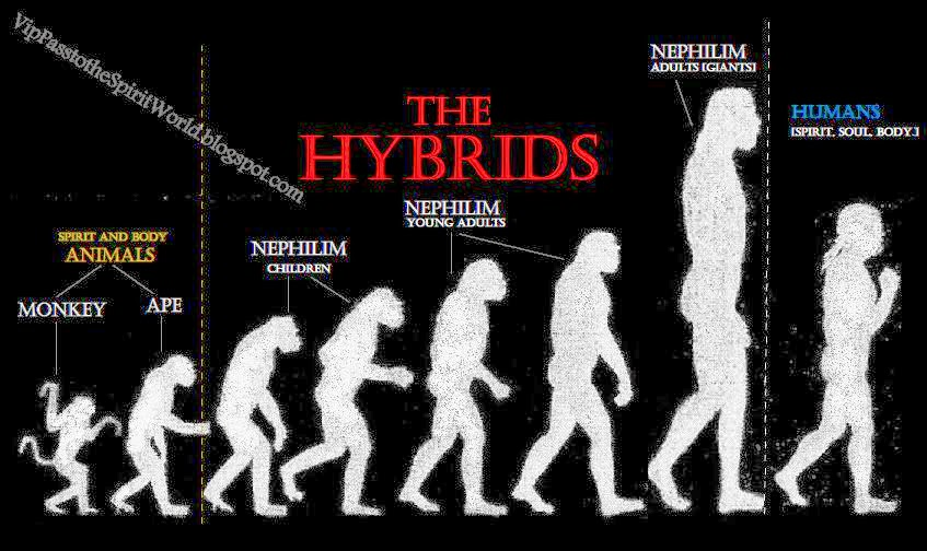 an overview of the human hybrids by michael f hammer Family tree dna's genomics research center discovery of extremely ancient root to the human y dr michael f hammer of the.
