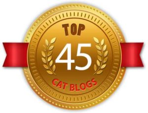 Top Blogger Badge