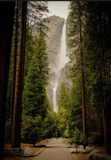 Yosemite National Park (Best Honeymoon Destinations In USA) 7