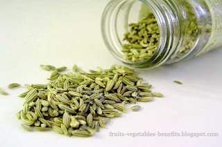 benefits_of_eating fennel_fruits-vegetables-benefits.blogspot.com(4)