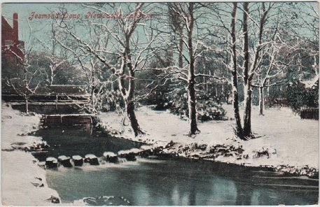Vintage postcard of Jesmond Dene, Newcastle-on-Tyne