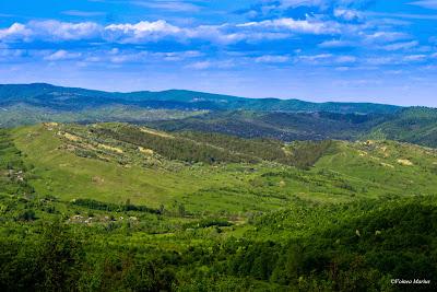 Peisaj - landscape - primavara foto 12