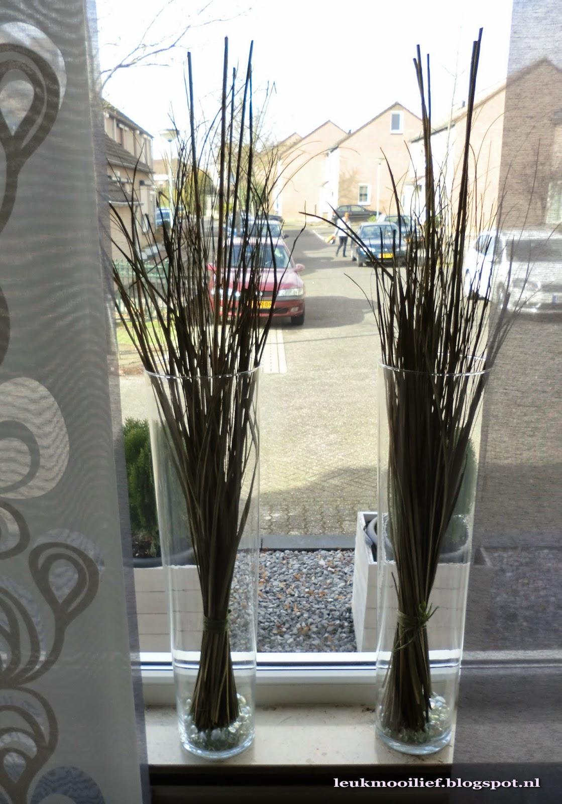 leuk mooi lief hoge vazen met gras