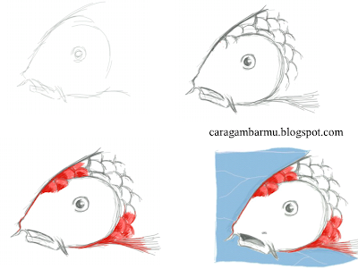 how to draw head of fish easily step by step for beginners kid drawing and adult