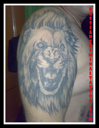 Тигр татуировка, оскал тигра - значение татуировок.