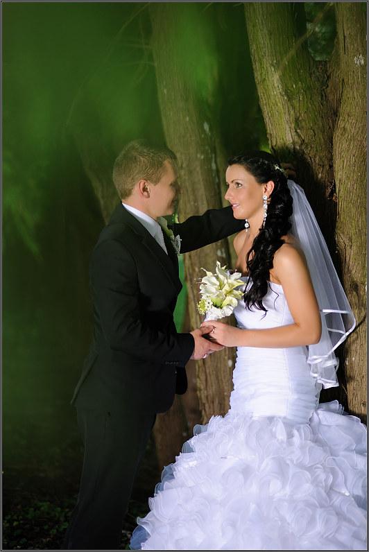 klasikinė vestuvių fotosesija gamtoje