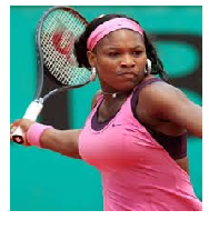 Who won women's single title in the US Open Tennis Championship  2013 ?  Ans :- Serena Williams           She won her fifth U.S. Open Championship by defeating Victoria Azarenka a no. 2 player