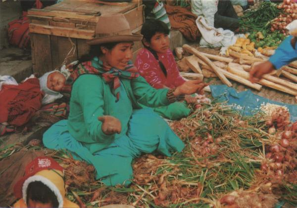 selling onions in a Peru market