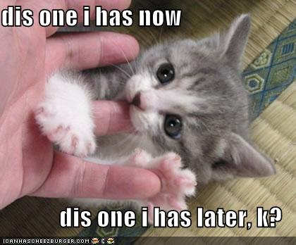 funny pictures kitten eats finger later